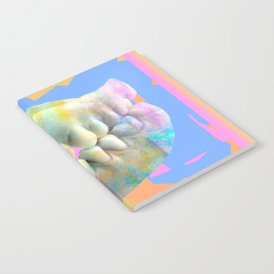 Dino tracks Notebook