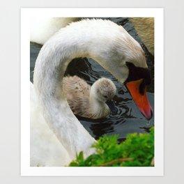 Mothers Love Art Print