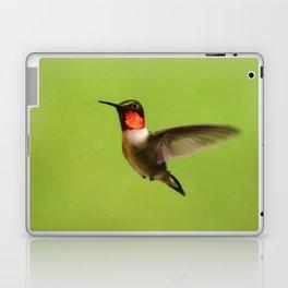 Hummingbird X Laptop & iPad Skin