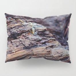 Wooden Texture Pillow Sham