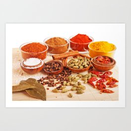 Spices and herbs Art Print