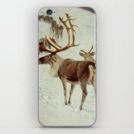 Kuhnert, Friedrich Wilhelm (1865-1926) - Wild Life of the World 1916 v.1 (Skandinavian Reindeer iPhone Skin