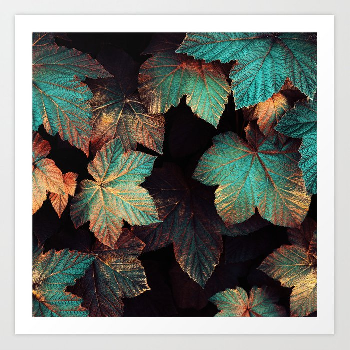 Copper And Teal Leaves Kunstdrucke