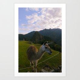 Machu Picchu 001 Art Print