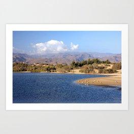 Amazing Gran Canaria Art Print
