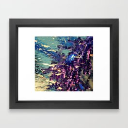 Novascochia Framed Art Print