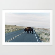 Buffalo Bill Art Print