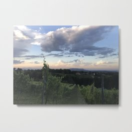 Sunset Over Vineyard of Austria Metal Print