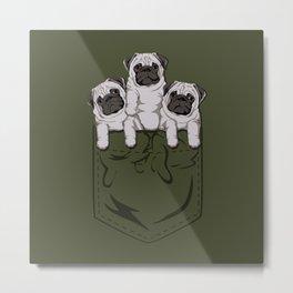 Pocket Pug Metal Print