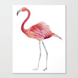 Watercolor pink flamingo Canvas Print
