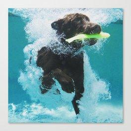 Dog Aquatic Canvas Print