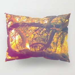 Infinite Connection Pillow Sham