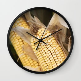 cobs and corn in the farm Wall Clock
