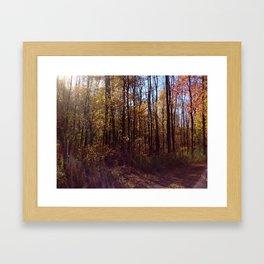 Upstate New York in the Fall 2 Framed Art Print