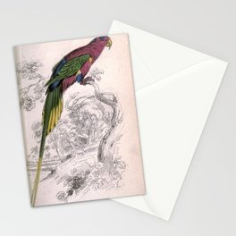 Papuan Lory charmosyna papuensis8 Stationery Cards