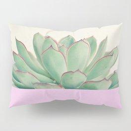 Succulent Dip Pillow Sham