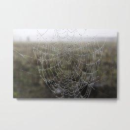 wet spider web Metal Print