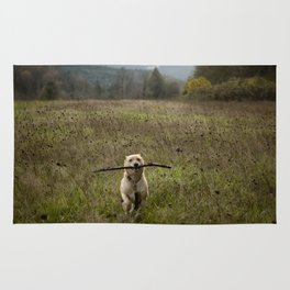 Fetching Rug