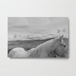 Owens Valley Metal Print