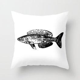Cyprichromis cichlid Throw Pillow