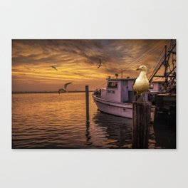 Fishing Boat and Gulls at Sunrise by Aransas Pass Harbor in Corpus Christi Bay by the Gulf of Mexico Canvas Print