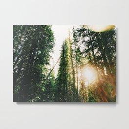 Into the Wild / Utah Metal Print