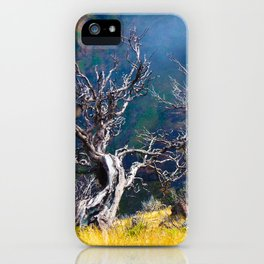 Old trees against the backdrop of the mountain iPhone Case