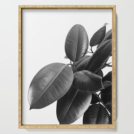 Ficus Elastica #23 #BlackAndWhite #foliage #decor #art #society6 Serving Tray