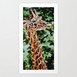 Masai Giraffe Art Print