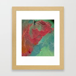 Lonely Monk Framed Art Print