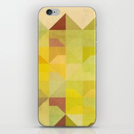 San Francisco Row iPhone Skin