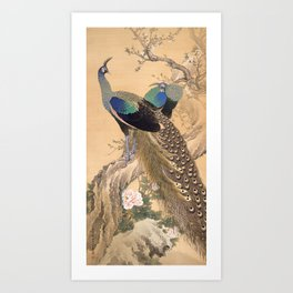 A Pair of Peacocks in Spring - Japanese Painting Art Print
