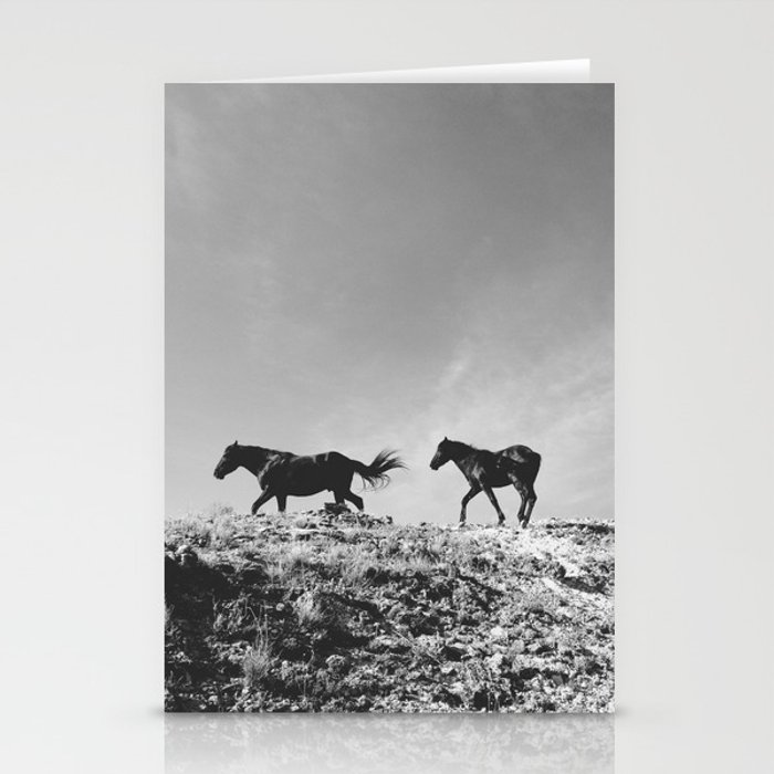 Pryor Mountain Wild Mustangs Stationery Cards