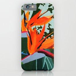Strelitzia - Bird of Paradise iPhone Case