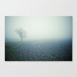 fog #1 Canvas Print