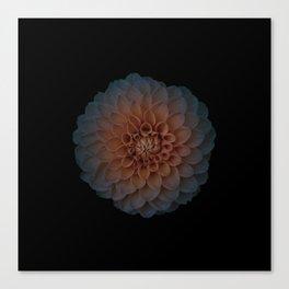 Universal Bloom Canvas Print