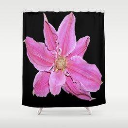 Pink & Black Shower Curtain