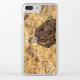 Bald Eagle Clear iPhone Case