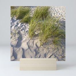 Sand Dune of Denmark Mini Art Print