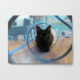 House Panther Metal Print