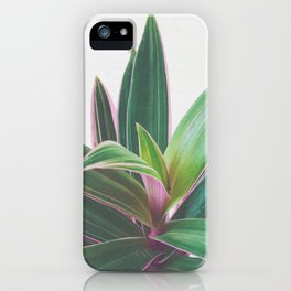 Oyster Plant iPhone Case