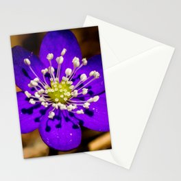 the first flower of spring Stationery Cards