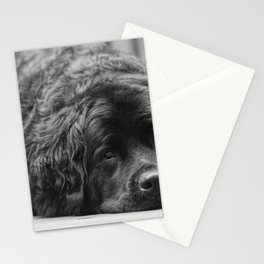 Lazy days Stationery Cards