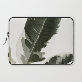 Variegated Rubber Plant 03 Laptop Sleeve