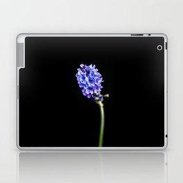 Lavandula pinnata Laptop & iPad Skin