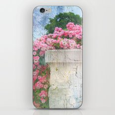 Cascade of Pink Roses iPhone & iPod Skin