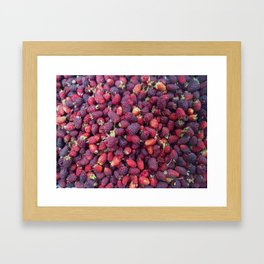 Berries in Paloquemao - Bayas en Paloquemao Framed Art Print