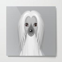 Afghan hound. Dog face illustration Metal Print