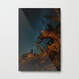 Golden Pine. Metal Print