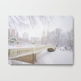 Central Park New York City Snow Day Metal Print
